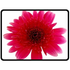 Flower Isolated Transparent Blossom Double Sided Fleece Blanket (large)