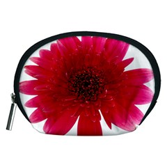 Flower Isolated Transparent Blossom Accessory Pouches (medium)