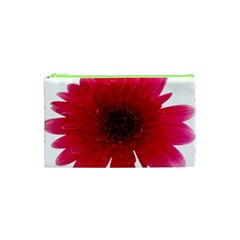 Flower Isolated Transparent Blossom Cosmetic Bag (xs)