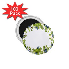 Birthday Card Flowers Daisies Ivy 1.75  Magnets (100 pack)