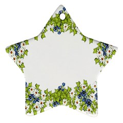Birthday Card Flowers Daisies Ivy Star Ornament (two Sides)