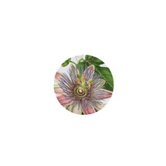 Passion Flower Flower Plant Blossom 1  Mini Buttons