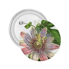 Passion Flower Flower Plant Blossom 2.25  Buttons