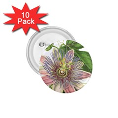 Passion Flower Flower Plant Blossom 1.75  Buttons (10 pack)