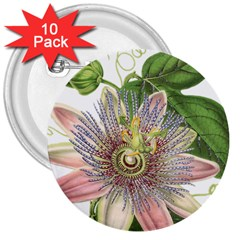 Passion Flower Flower Plant Blossom 3  Buttons (10 Pack)