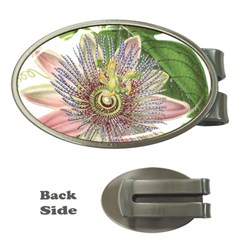 Passion Flower Flower Plant Blossom Money Clips (oval)