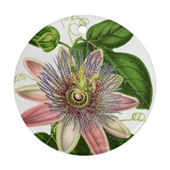 Passion Flower Flower Plant Blossom Round Ornament (Two Sides)