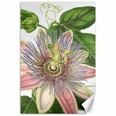 Passion Flower Flower Plant Blossom Canvas 24  X 36