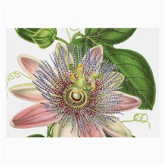 Passion Flower Flower Plant Blossom Large Glasses Cloth