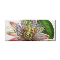 Passion Flower Flower Plant Blossom Cosmetic Storage Cases
