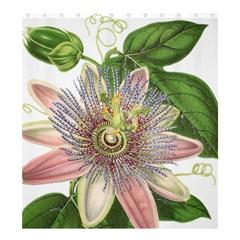 Passion Flower Flower Plant Blossom Shower Curtain 66  x 72  (Large)