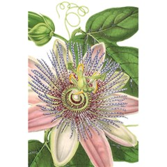 Passion Flower Flower Plant Blossom 5.5  x 8.5  Notebooks