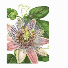 Passion Flower Flower Plant Blossom Large Garden Flag (two Sides)