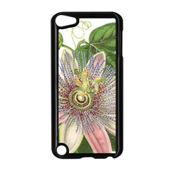 Passion Flower Flower Plant Blossom Apple Ipod Touch 5 Case (black)