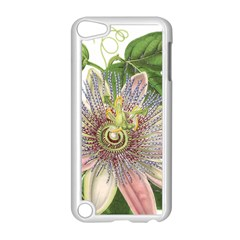 Passion Flower Flower Plant Blossom Apple iPod Touch 5 Case (White)