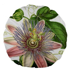 Passion Flower Flower Plant Blossom Large 18  Premium Round Cushions