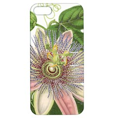 Passion Flower Flower Plant Blossom Apple Iphone 5 Hardshell Case With Stand