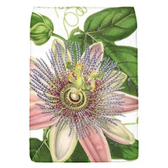 Passion Flower Flower Plant Blossom Flap Covers (S)