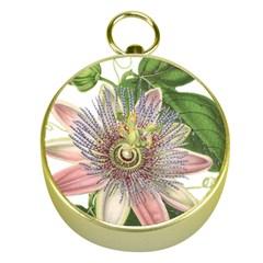 Passion Flower Flower Plant Blossom Gold Compasses