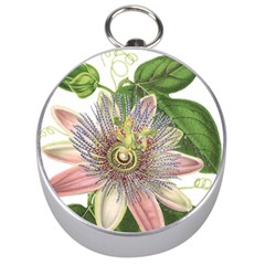 Passion Flower Flower Plant Blossom Silver Compasses