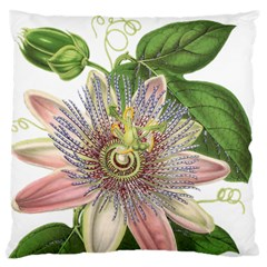 Passion Flower Flower Plant Blossom Large Flano Cushion Case (Two Sides)