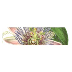 Passion Flower Flower Plant Blossom Satin Scarf (oblong)