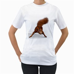 Squirrel Wild Animal Animal World Women s T Shirt (white) (two Sided)