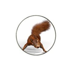 Squirrel Wild Animal Animal World Hat Clip Ball Marker