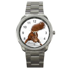 Squirrel Wild Animal Animal World Sport Metal Watch