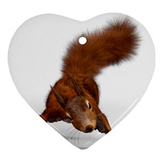Squirrel Wild Animal Animal World Heart Ornament (Two Sides)