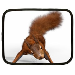 Squirrel Wild Animal Animal World Netbook Case (Large)