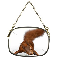 Squirrel Wild Animal Animal World Chain Purses (One Side)