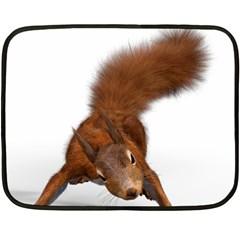Squirrel Wild Animal Animal World Fleece Blanket (mini)