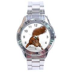 Squirrel Wild Animal Animal World Stainless Steel Analogue Watch