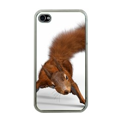 Squirrel Wild Animal Animal World Apple Iphone 4 Case (clear)