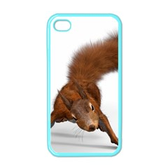 Squirrel Wild Animal Animal World Apple iPhone 4 Case (Color)