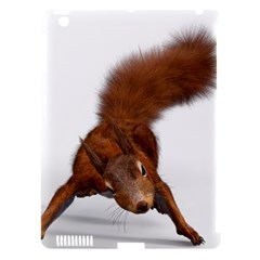 Squirrel Wild Animal Animal World Apple Ipad 3/4 Hardshell Case (compatible With Smart Cover)