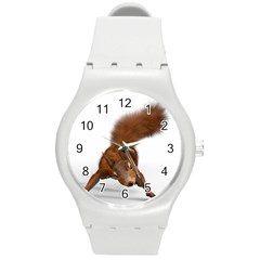 Squirrel Wild Animal Animal World Round Plastic Sport Watch (m)