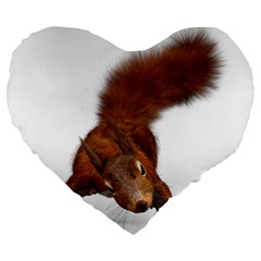Squirrel Wild Animal Animal World Large 19  Premium Heart Shape Cushions