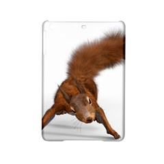 Squirrel Wild Animal Animal World iPad Mini 2 Hardshell Cases