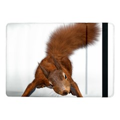 Squirrel Wild Animal Animal World Samsung Galaxy Tab Pro 10 1  Flip Case