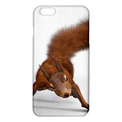 Squirrel Wild Animal Animal World Iphone 6 Plus/6s Plus Tpu Case