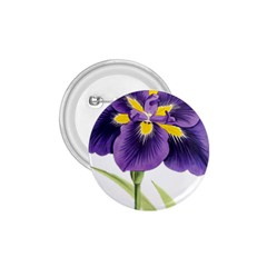 Lily Flower Plant Blossom Bloom 1 75  Buttons