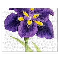 Lily Flower Plant Blossom Bloom Rectangular Jigsaw Puzzl