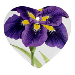 Lily Flower Plant Blossom Bloom Heart Ornament (two Sides)
