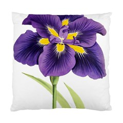 Lily Flower Plant Blossom Bloom Standard Cushion Case (one Side)