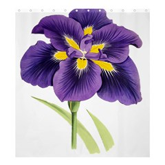 Lily Flower Plant Blossom Bloom Shower Curtain 66  X 72  (large)