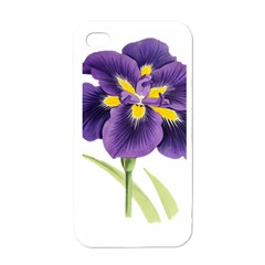 Lily Flower Plant Blossom Bloom Apple iPhone 4 Case (White)