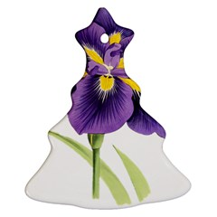 Lily Flower Plant Blossom Bloom Christmas Tree Ornament (two Sides)