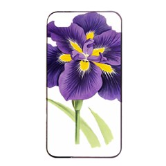 Lily Flower Plant Blossom Bloom Apple iPhone 4/4s Seamless Case (Black)